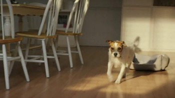 Glad ForceFlex TV Spot, 'Dog Bone' - Thumbnail 2