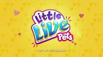 Little Live Pets Little Turtles TV Spot, 'Disney Channel' - Thumbnail 6