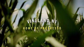 Progresso Chicken Noodle Soup TV Spot, 'One Kind of Chicken'