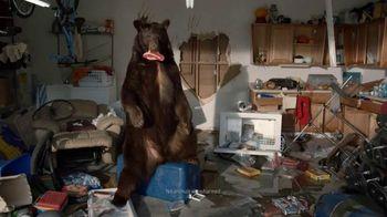 Farmers Insurance TV Spot, 'Bear Sighting' - 3805 commercial airings