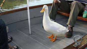 Aflac TV Spot, 'Holes in the Boat' - Thumbnail 3