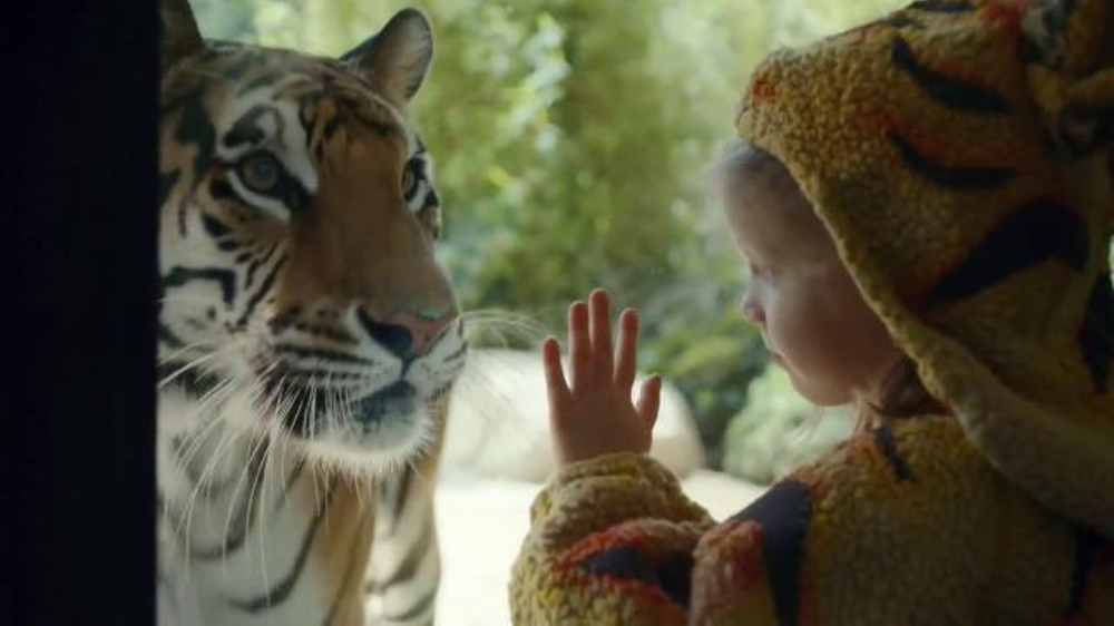 Expedia TV Commercial, 'Zoo'