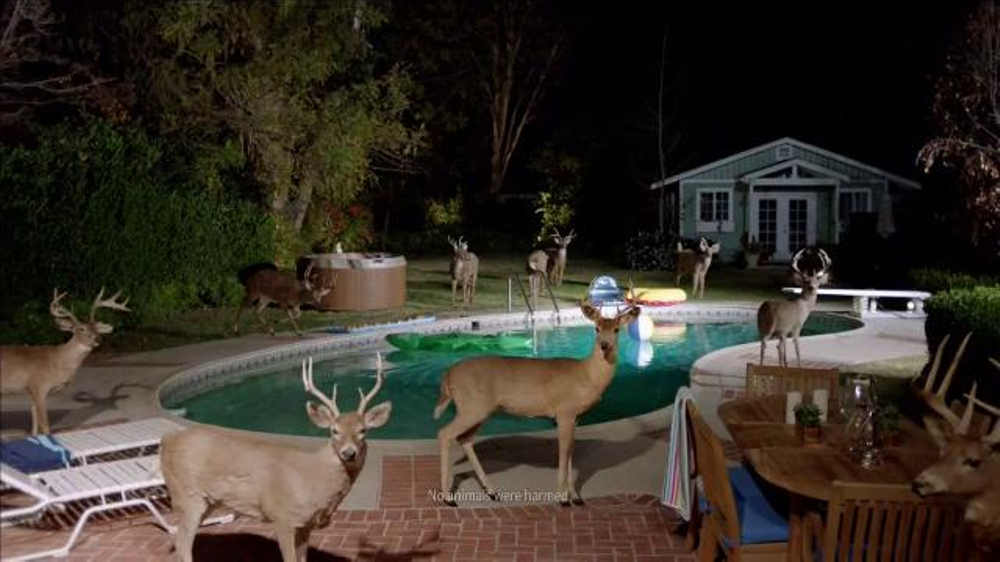 Farmers Insurance TV Commercial, 'Hall of Claims: Stag Pool Party'