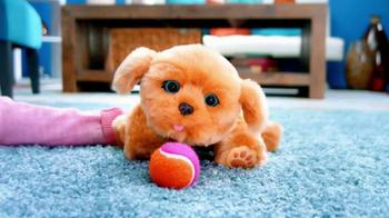 Little Live Pets Snuggles TV Spot, 'Best Friend Tiara' - Thumbnail 3