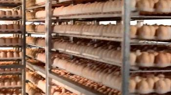 Sanderson Farms TV Spot, 'Employees' - Thumbnail 2