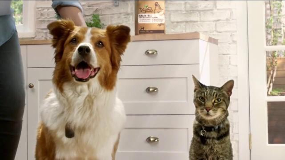 Purina Beyond TV Commercial, 'Honestly'