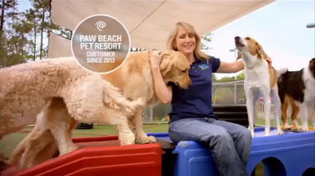 Time Warner Cable Business Class TV Spot, 'Paw Beach Pet Resort' - Thumbnail 1