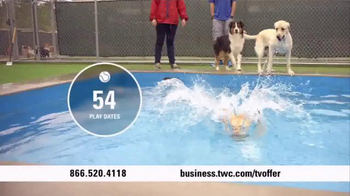 Time Warner Cable Business Class TV Spot, 'Paw Beach Pet Resort' - Thumbnail 2