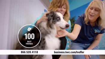 Time Warner Cable Business Class TV Spot, 'Paw Beach Pet Resort' - Thumbnail 6