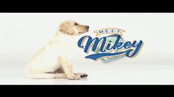 Southeastern Guide Dogs TV Spot, 'Puppies with Purpose' - Thumbnail 1