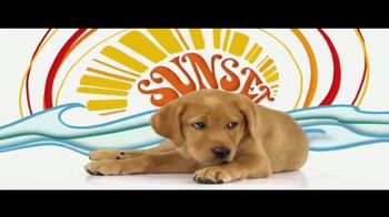 Southeastern Guide Dogs TV Spot, 'Puppies with Purpose' - Thumbnail 3