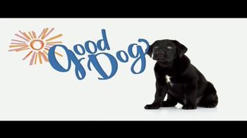 Southeastern Guide Dogs TV Spot, 'Puppies with Purpose' - Thumbnail 6