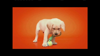 Southeastern Guide Dogs TV Spot, 'Meet Jackie and Gibson' - Thumbnail 6