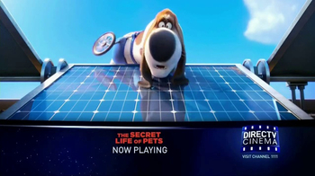 DIRECTV Cinema TV Spot, 'The Secret Life of Pets'