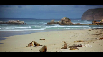 South Australia TV Spot, 'Surf & Outback' Song By Oscilla Featuring Kacee - Thumbnail 2