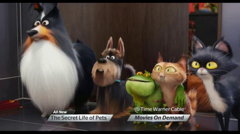The Secret Life of Pets thumbnail