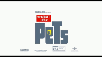 Time Warner Cable On Demand TV Spot, 'The Secret Life of Pets' - Thumbnail 7