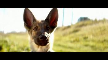 A Dog's Purpose - Thumbnail 4