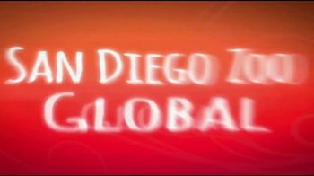 San Diego Zoo Global Wildlife Conservancy TV Spot, 'Take the Pledge' - Thumbnail 5