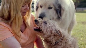 Purina Dog Chow TV Spot, 'Dog Food Made in USA'