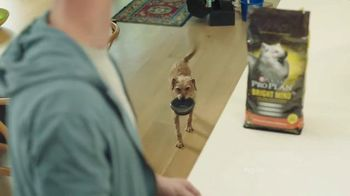 PetSmart TV Spot, 'Purina Pro Plan: Scout' Song by Queen - 808 commercial airings