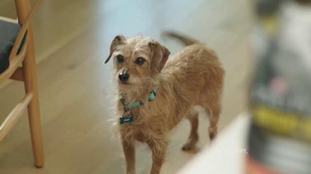 PetSmart TV Spot, 'Purina Pro Plan: Scout' Song by Queen - Thumbnail 1