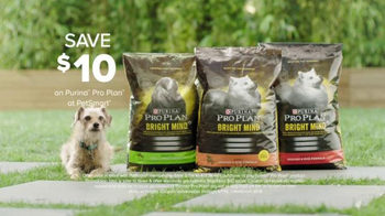 PetSmart TV Spot, 'Purina Pro Plan: Scout' Song by Queen - Thumbnail 7