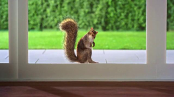 Purina Busy TV Spot, 'Mr. Squirrel'