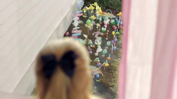 Walmart TV Spot, 'Easter Surprise: Jelly Bean Garden'