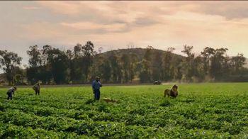 Food Lion, LLC TV Spot, 'Lion Quest' - 2 commercial airings
