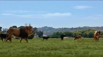 Food Lion, LLC TV Spot, 'Lion Quest' - Thumbnail 3