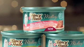 Fancy Feast Medleys TV Spot, 'Inspiration' - Thumbnail 4