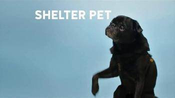 The Shelter Pet Project TV Spot, 'Shelter Pet Adoption' - Thumbnail 1