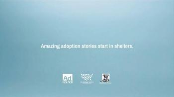 The Shelter Pet Project TV Spot, 'Shelter Pet Adoption' - Thumbnail 8