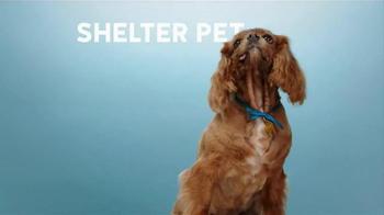 The Shelter Pet Project TV Spot, 'Shelter Pet Adoption' - Thumbnail 3