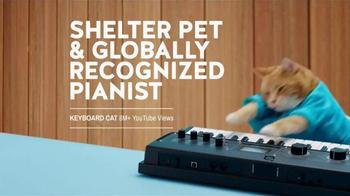 The Shelter Pet Project TV Spot, 'Shelter Pet Adoption' - Thumbnail 5