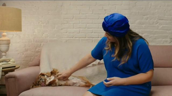 The Shelter Pet Project TV Spot, 'Toast Meets World' - Thumbnail 1