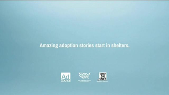 The Shelter Pet Project TV Spot, 'Toast Meets World' - Thumbnail 10