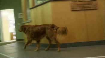 Subaru TV Spot, 'Pet Hall of Fame: JJ' - Thumbnail 5