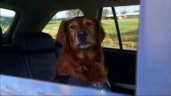 Subaru TV Spot, 'Pet Hall of Fame: JJ' - Thumbnail 9