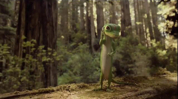 GEICO Emergency Roadside Service TV Spot, 'Tree' - 6558 commercial airings