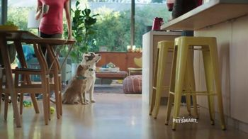 PetSmart TV Spot, 'Nutrition Open House' Song by Queen - 1342 commercial airings
