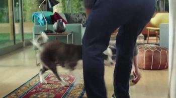 PetSmart TV Spot, 'Nutrition Open House' Song by Queen - Thumbnail 5