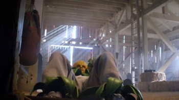 Plants vs. Zombies: Garden Warfare 2 TV Spot, 'Corn Training Montage' - Thumbnail 5