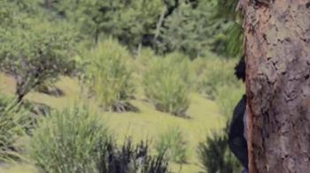 TVyNovelas TV Spot, 'Thalía' [Spanish] - Thumbnail 1