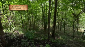 Whitetail Properties TV Spot, 'Lodge & Lake for Sale in Alabama: Lowndes' - Thumbnail 6