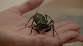 Microsoft Windows 10 TV Spot, 'Meet the Bug Chicks' - Thumbnail 9
