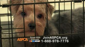 ASPCA TV Spot, 'No Escape' Featuring Lori Loughlin - Thumbnail 4