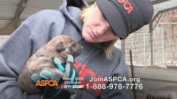 ASPCA TV Spot, 'No Escape' Featuring Lori Loughlin - Thumbnail 6
