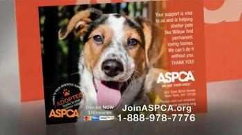 ASPCA TV Spot, 'No Escape' Featuring Lori Loughlin - Thumbnail 7